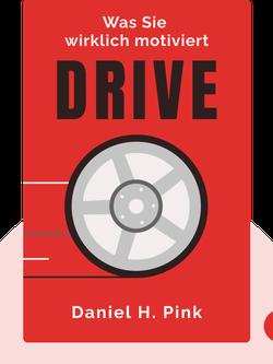 Drive: Was Sie wirklich motiviert von Daniel H. Pink