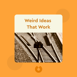 Weird Ideas That Work: How to Build a Creative Company by Robert I. Sutton