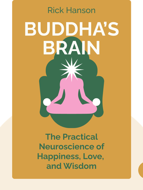 Buddha's Brain: The Practical Neuroscience of Happiness, Love, and Wisdom von Rick Hanson