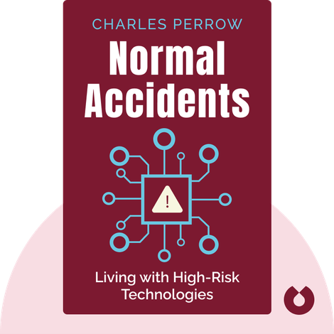 Normal Accidents von Charles Perrow