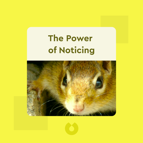 The Power of Noticing by Max H. Bazerman