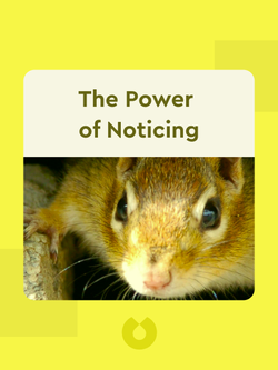 The Power of Noticing: What the Best Leaders See von Max H. Bazerman