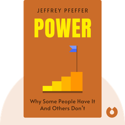 Power: Why Some People Have It And Others Don't by Jeffrey Pfeffer