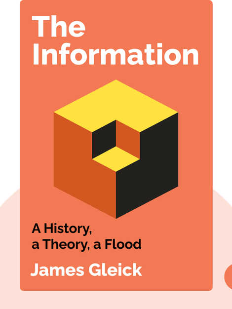 The Information: A History, a Theory, a Flood von James Gleick
