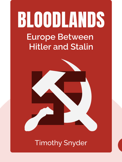 Bloodlands: Europe Between Hitler and Stalin by Timothy Snyder