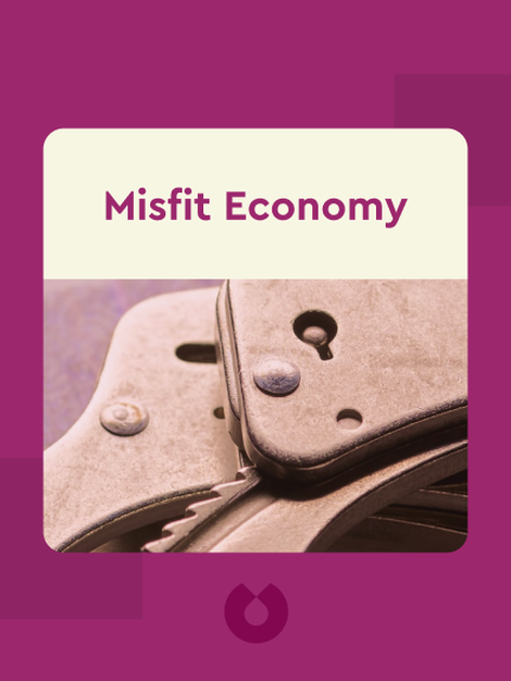 Misfit Economy: Lessons in Creativity from Pirates, Hackers, Gangsters and Other Informal Entrepreneurs by Alexa Clay and Kyra Maya Phillips