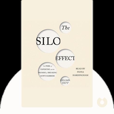 The Silo Effect von Gillian Tett
