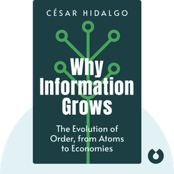 Why Information Grows: The Evolution of Order, from Atoms to Economies by César Hidalgo