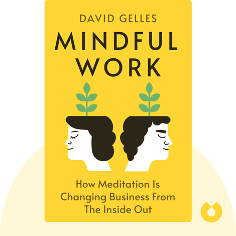 Mindful Work by David Gelles