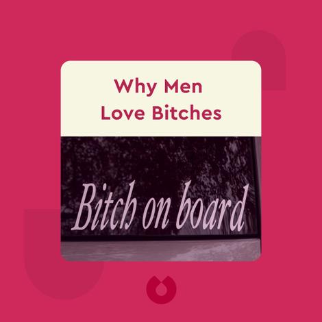 Why Men Love Bitches von Sherry Argov