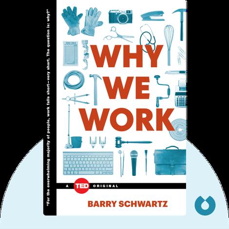 Why We Work von Barry Schwartz