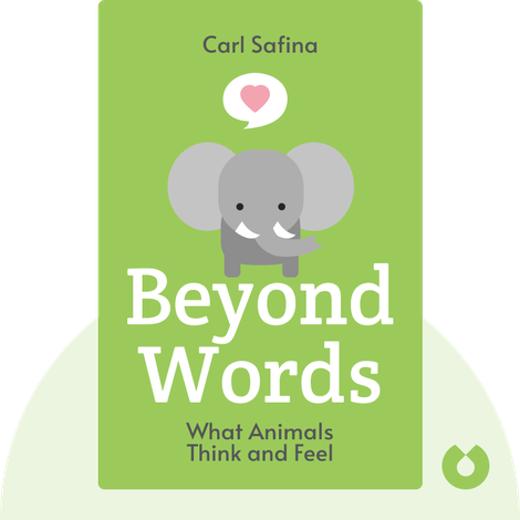 Beyond Words von Carl Safina