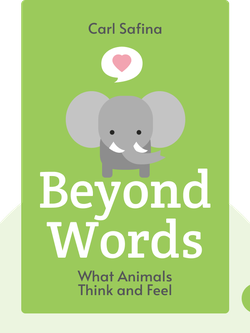 Beyond Words: What Animals Think and Feel by Carl Safina