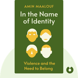 In the Name of Identity: Violence and the Need to Belong von Amin Maalouf
