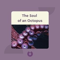 The Soul of an Octopus: A Surprising Exploration into the Wonder of Consciousness by Sy Montgomery