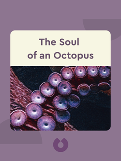 The Soul of an Octopus: A Surprising Exploration into the Wonder of Consciousness von Sy Montgomery