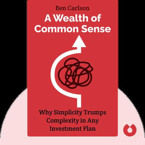 A Wealth of Common Sense von Ben Carlson