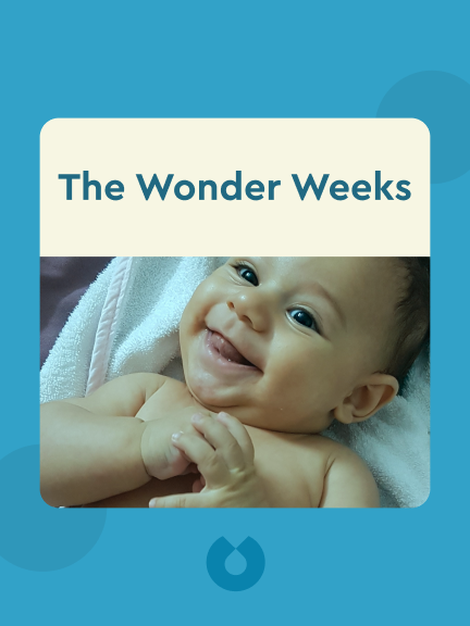 The Wonder Weeks: How to Stimulate the Most Important Developmental Weeks in Your Baby's First 20 Months and Turn these 10 Predictable, Great, Fussy Phases into Magical Leaps Forward by Hetty van de Rijt, Ph.D., and Frans Plooij, Ph.D.