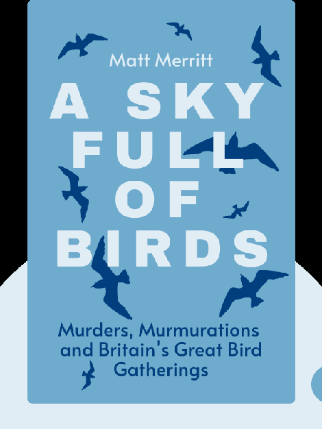 A Sky Full of Birds: In Search of Murders, Murmurations and Britain's Great Bird Gatherings von Matt Merritt