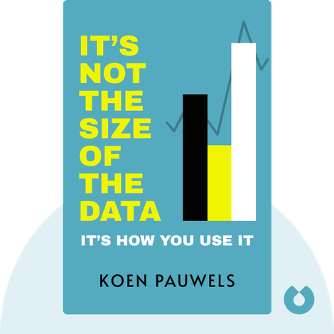 It's Not the Size of the Data by Koen Pauwels