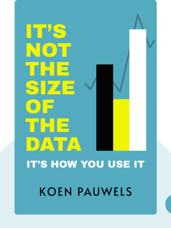 It's Not the Size of the Data: It's How You Use It by Koen Pauwels