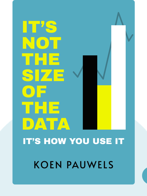 It's Not the Size of the Data: It's How You Use It von Koen Pauwels