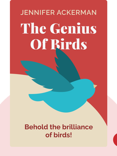 The Genius of Birds: Behold the brilliance of birds! by Jennifer Ackerman