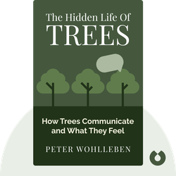 The Hidden Life of Trees: What They Feel, How They Communicate – Discoveries from a Secret World by Peter Wohlleben