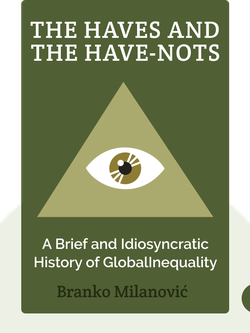 The Haves and the Have-Nots: A Brief and Idiosyncratic History of Global Inequality von Branko Milanović