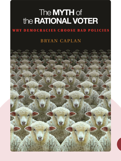 The Myth of the Rational Voter: Why Democracies Choose Bad Policies von Bryan Caplan