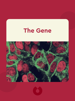The Gene: An Intimate History von Siddhartha Mukherjee