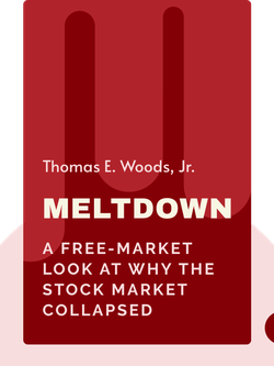 Meltdown: A Free-Market Look at Why the Stock Market Collapsed, the Economy Tanked, and Government Bailouts Will Make Things Worse von Thomas E. Woods, Jr.