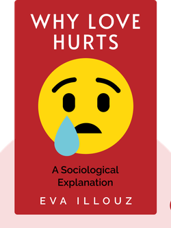 Why Love Hurts: A Sociological Explanation von Eva Illouz