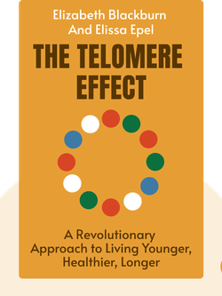 The Telomere Effect: A Revolutionary Approach to Living Younger, Healthier, Longer von Elizabeth Blackburn and Elissa Epel