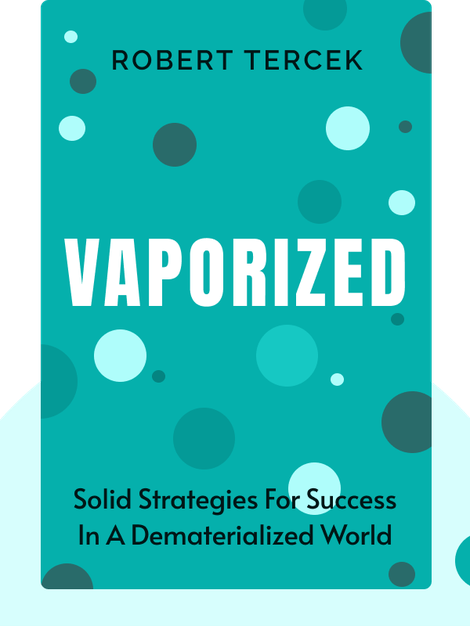 Vaporized: Solid Strategies For Success in a Dematerialized World by Robert Tercek