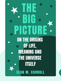 The Big Picture: On the Origins of Life, Meaning and the Universe Itself by Sean M. Carroll