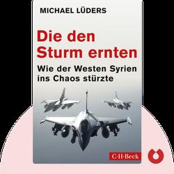 Die den Sturm ernten: Wie der Westen Syrien ins Chaos stürzte von Michael Lüders