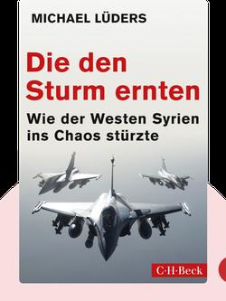 Die den Sturm ernten: Wie der Westen Syrien ins Chaos stürzte by Michael Lüders