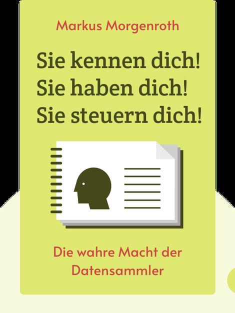 Sie kennen dich! Sie haben dich! Sie steuern dich!: Die wahre Macht der Datensammler by Markus Morgenroth
