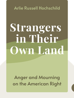 Strangers in Their Own Land: Anger and Mourning on the American Right von Arlie Russell Hochschild