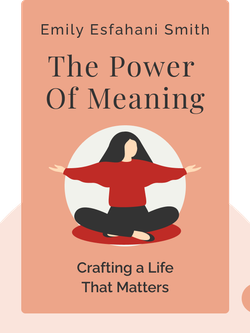 The Power Of Meaning: Crafting a Life That Matters von Emily Esfahani Smith