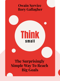 Think Small: The Surprisingly Simple Way to Reach Big Goals by Owain Service & Rory Gallagher