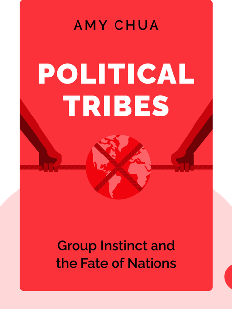 Political Tribes: Group Instinct and the Fate of Nations von Amy Chua