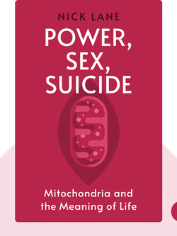 Power, Sex, Suicide: Mitochondria and the Meaning of Life von Nick Lane