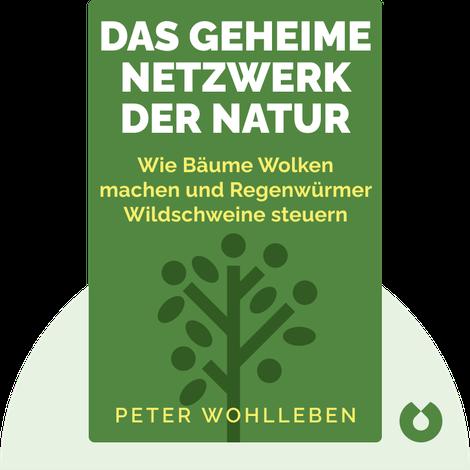 Das geheime Netzwerk der Natur by Peter Wohlleben