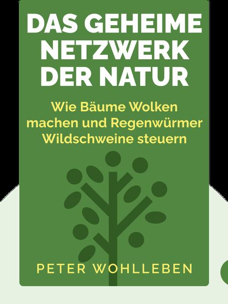 Das geheime Netzwerk der Natur: Wie Bäume Wolken machen und Regenwürmer Wildschweine steuern von Peter Wohlleben