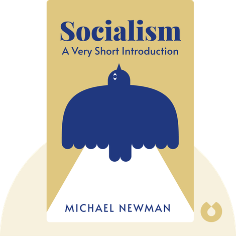 Socialism by Michael Newman