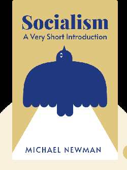 Socialism: A Very Short Introduction von Michael Newman