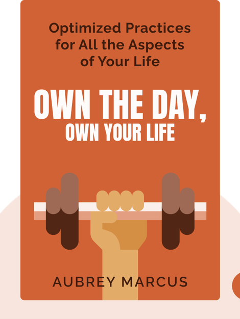 Own the Day, Own Your Life: Optimized Practices for Waking, Working, Learning, Eating, Training, Playing, Sleeping and Sex von Aubrey Marcus