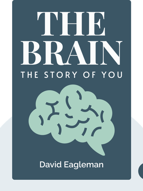 The Brain: The Story of You von David Eagleman